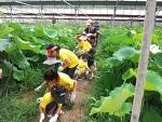 하이맘 키즈 봉사단 2차 농장체험(0811)