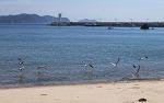 충남 태안의 어은돌해수욕장과 만리포 해수욕장, 의항해수욕장 알아보고 가세요