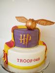미국 초등학교 보이 스카웃 행사 케이크- 해리포터 케이크