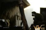 겨울 동물원에서 느낀 따뜻함. 원숭이 엄마 품에 안긴 새끼원숭이