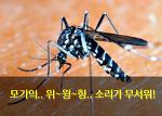 간단 하면서 쉬운 천연 성분으로 된 모기 퇴치제 만들기