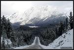 [캐나다 로드트립 - 17] 알버타, 재스퍼 국립공원