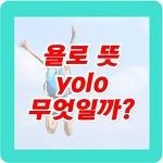 욜로(yolo) 뜻, yolo 신조어 왜 대세인가?