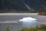"""알래스카""""Whiittier 바다와 빙하"""""""