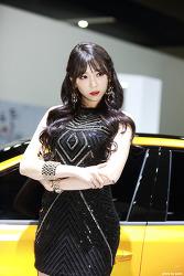 2017 서울모터쇼 기아 레이싱걸 이은혜