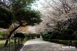 부산 여행: 햇살 좋은 봄날, 부산진구 나들이 코스!