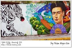 [적묘의 멕시코]매력적인 벽화, 무지 많은 해초,칸쿤 근처 플라야 델 까르멘,playa de carmen