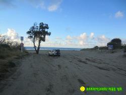 뉴질랜드 길 위의 생활기 659- 아히파라 해변에서 만난 것들