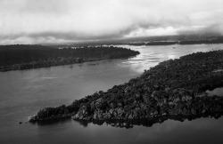 [서평] 아마존, 생명의 강과 수난의 이야기