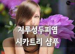 지루성두피염 개선 시카트리 천연 삼푸