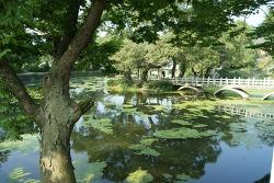 [함안여행] 신비로운 분위기의 연못 이수정,유유자적한 무진정