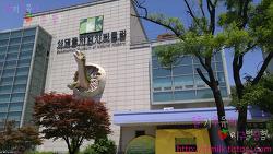 서울 공룡박물관 - 서대문 자연사 박물관