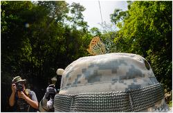 머리위에 앉은 나비 셀카찍기 (토키나 10-17mm fisheye)