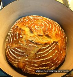 지난 2주동안 구운 빵