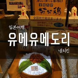 후쿠오카 여행 #4 하카타 명물 : 냉치킨 유메유메도리(努努鷄)
