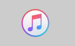 iTunes에서 중복된 음원을 검색하여  말끔히 삭제하는 방법