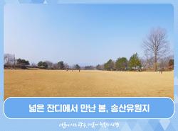 넓은 잔디에서 만난 봄, 송산유원지