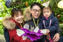 에버랜드, '미리봄 나비정원' 오픈!