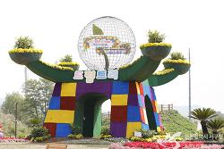 인천 대표 가을꽃축제, 2017 드림파크 가을 나들이!