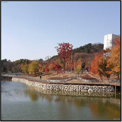 대구 두류공원 성당못의 가을 풍경