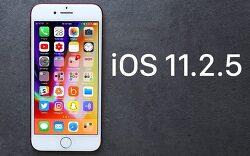 iOS 11.2.5 업데이트 배포 IPSW 다운로드