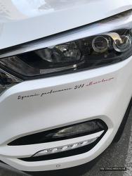 [자동차]사랑하는 애마 올뉴투싼