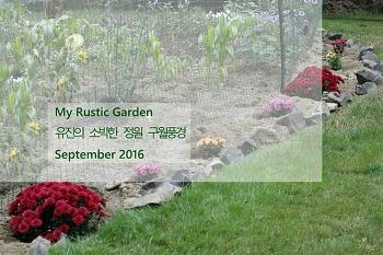 유진의 소박한 정원 구월풍경(사진 85장  슬라이드 쇼)