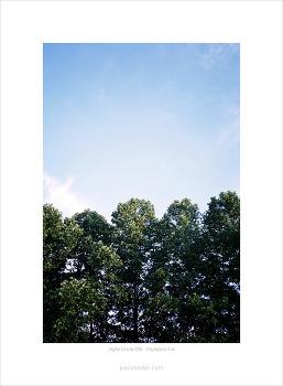 [Agfa Vista 200][Olympus XA] 푸른하늘