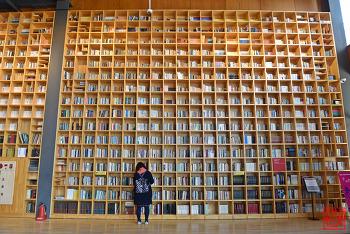 24시간 열려있는 아름다운 도서관 '지혜의숲' | 파주 가볼만한곳
