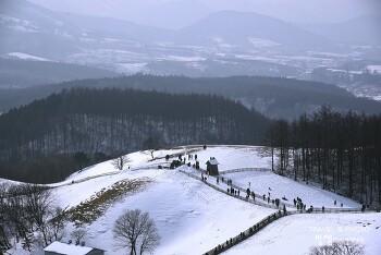 한국의 알프스, 대관령 양떼목장 겨울 눈내린 풍경