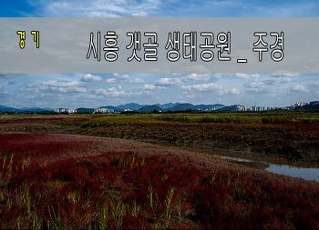2017.10.4   갯골 생태공원