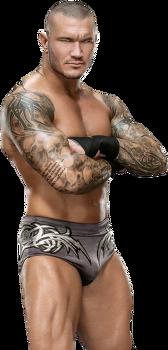 WWE 랜디오턴과 어린이의 RKO 일화