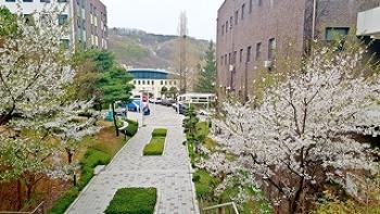 재학생이 소개하는 순천향대학교