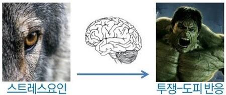 스트레스 치유하고 대응력 높이는 두뇌게임