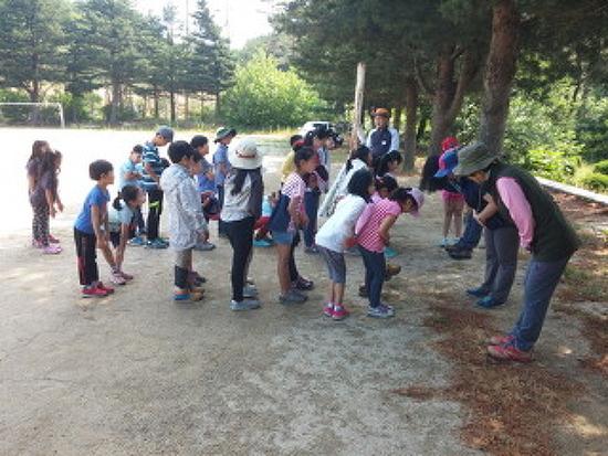 [숲속놀이학교] 2015 숲속놀이학교 1팀 마지막시간