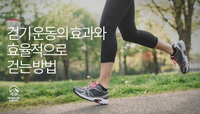 내 몸을 살리는 워킹 테라피, 걷기 운동의 효과..