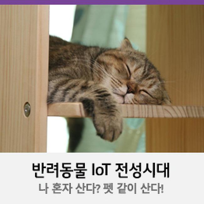 [U+PEN 비에르쥬] 나 혼자 산다 펫 같이 산다! 반려동물 IoT 전성시대