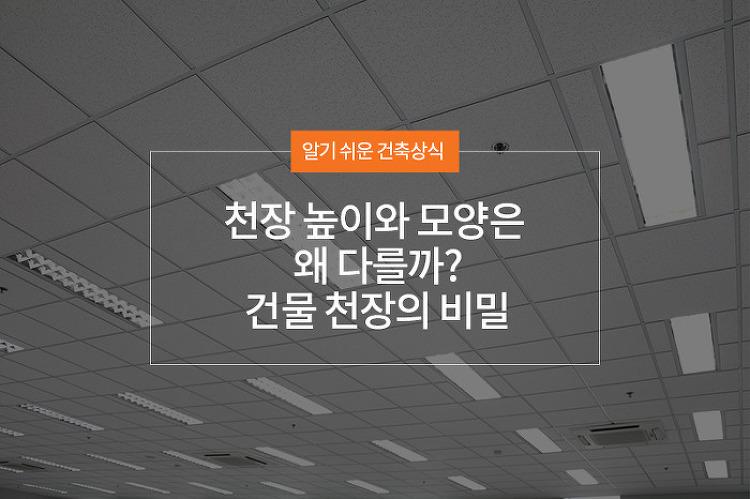 천장 높이와 모양은 왜 다를까? 건물 천장의 비밀