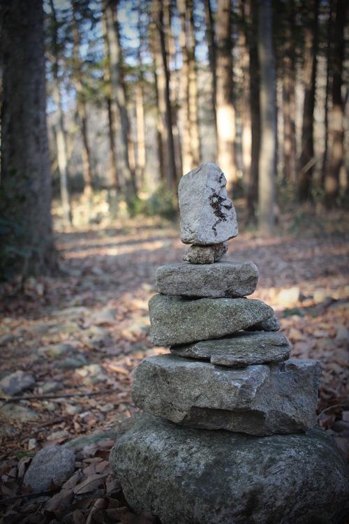 새해 첫 날, 순천 선암사 가는 길. 아픔다운 산책로
