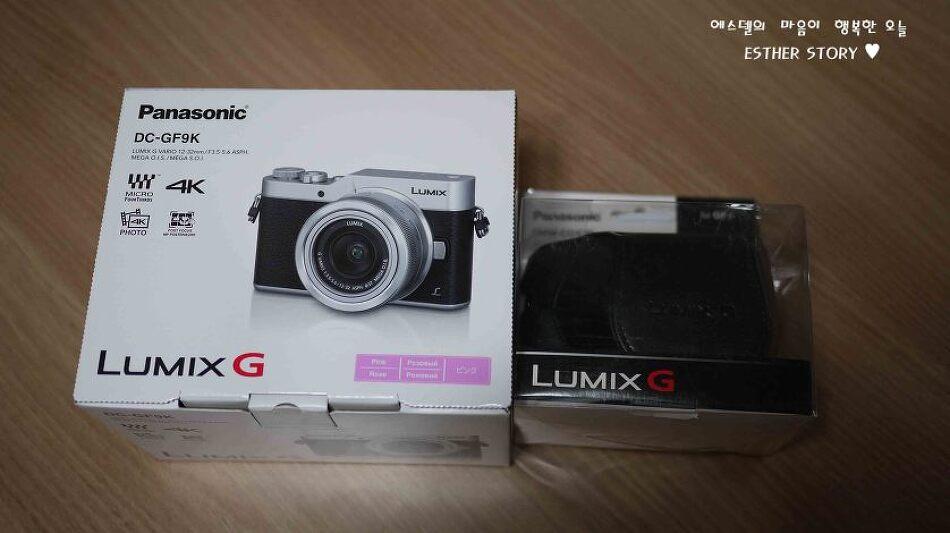 생일선물로 받은 미러리스 카메라, 파나소닉 루믹스 DC-GF9