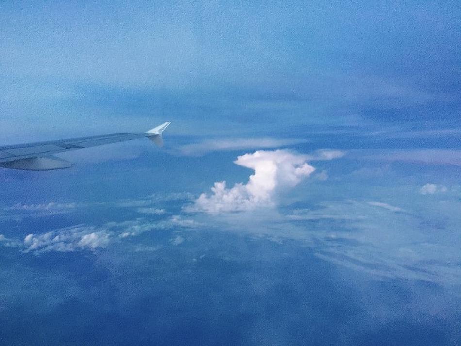 #Scubadiving: Bohol에서 스쿠버 자격증 :D