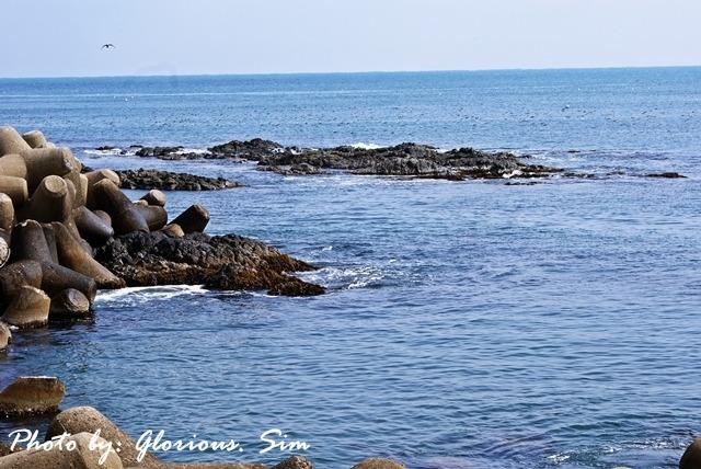 구룡포방파제에서 본 바다