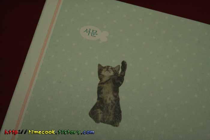 고양이책, 고양이 집사 자격 시험, 고양이 도서 추천, 고양이