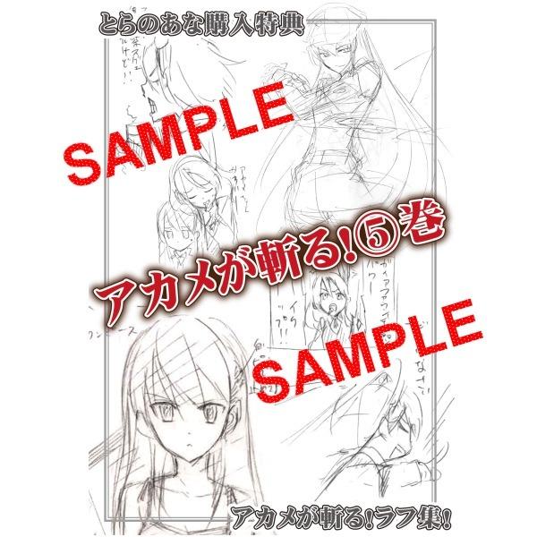 아카메가 벤다!(アカメが斬る!) 5권