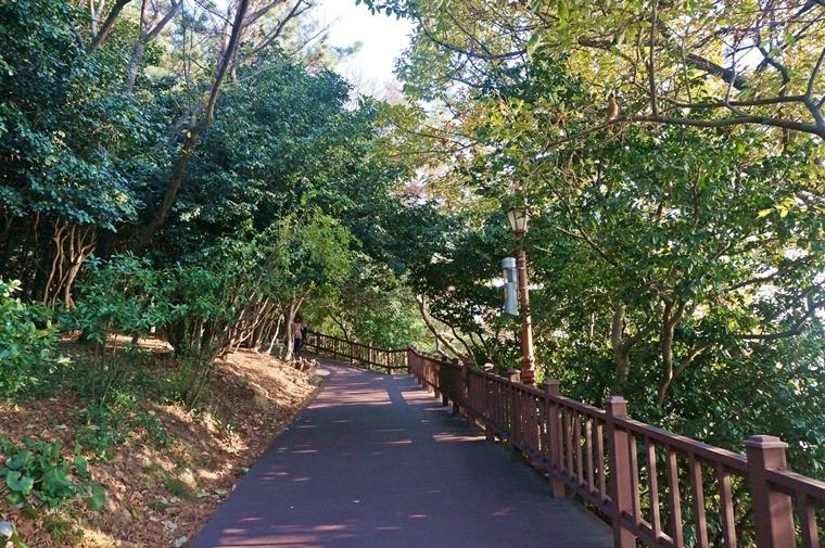 여수오동도 오동도 산책로코스 여수산책로