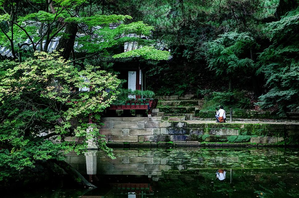 창덕궁 후원(비원)에서 사진찍고있는 사람이 담긴 풍경사진.