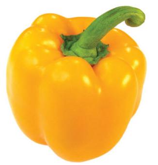 Перец желтый картинка