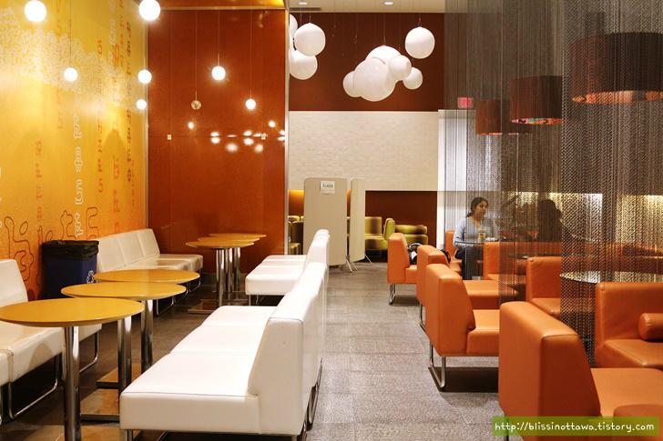 캐나다 버블티 카페