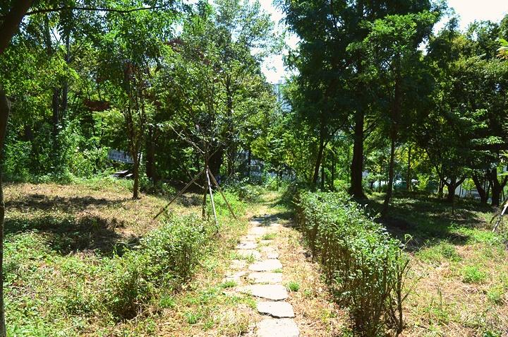 한림디자인고등학교 학교숲 비탈숲