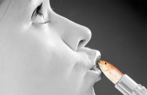 립스틱 물고기 비늘 Lipstick fish scale